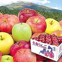 国華園 青森産 ご家庭用 おまかせ赤りんご 10kg1箱 品種おまかせ りんご
