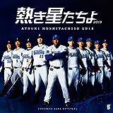 熱き星たちよ2018 横浜DeNAベイスターズ球団歌