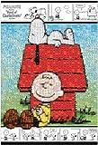 1000ピース ジグソーパズル PEANUTS モザイク スヌーピーとチャーリー・ブラウン (49x72cm)