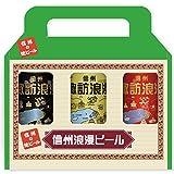 麗人 諏訪浪漫ビール缶3本セット