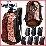 SPALDING(スポルディング) CAGER(ケイジャー) ブラック/ シルバー 40-007SV