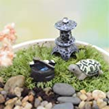 Danmu Miniature Plant Pots Bonsai Craft Micro Landscape DIY Decor Set (Tortoise)