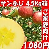 訳あり 福島県産  サンふじ リンゴ 4.5kg箱 12?25玉入