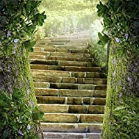 CSFOTO 5x5フィート 背景 石階段 2つの大きな木 写真背景 階段 階段 ケース ミスティ 自然 景色 ガーデンパーク レジャーリー バケーション ツアー リゾート 写真 スタジオ 小道具 ポリエステル 壁紙