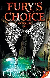 Fury's Choice (Afterlife, Inc.)