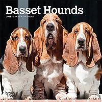 Basset Hounds 2019 Calendar