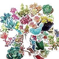 ステッカー 27pcs手描きの多肉植物サボテンステッカー日記ノートブックプランナースクラップブッキングステッカー