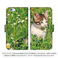 AQUOS ZETA SH-01H 手帳型 ケース [デザイン:5.眩しそうな子猫/マグネットハンドあり] 子猫 アクオス スマホ カバー