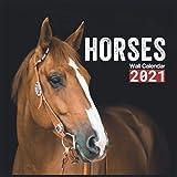 Horses Calendar 2021: Horses Wall Calendar 2021-2022 Size 8.5 x 8.5 Inch Monthly Square Wall Calendar,16 Month Calendar 2021