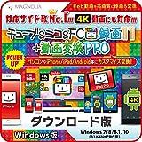 チューブ&ニコ&FC録画11+動画変換PRO Windows版 ダウンロード版