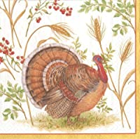 (pack of 40) - Cocktail Napkins Party Supplies Entertaining Fall Thanksgiving Dinner Decor Harvest Turkey Pk 40