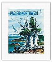太平洋岸北西部 - グレイハウンド - ビンテージな世界旅行のポスター によって作成された S.フレミング c.1958 - キャンバスアート - 28cm x 36cm キャンバスアート(ロール)