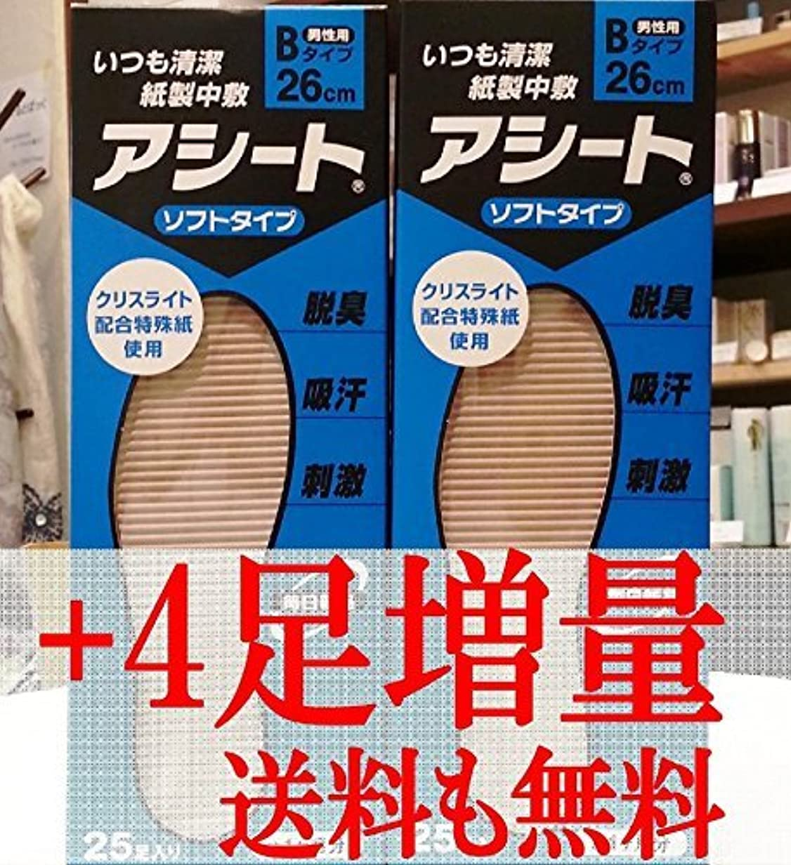 マージンカタログ有力者アシートB 25足入2箱セット+4足増量中(25cm)