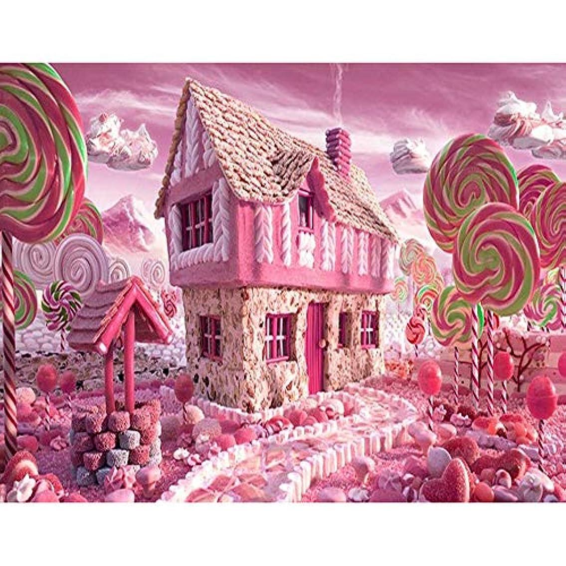 コロニアルクリップ蝶ホストZDDYX デジタル番号付き顔料塗装 ピンクの町絵画未完成の家の装飾ギフト