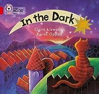 In the Dark (Collins Big Cat)