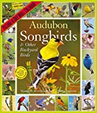 Audubon Songbirds and Other Backyard Birds 2019 Calendar: Picture-a-day