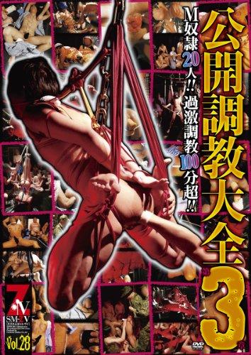 SM-ZV028 公開調教大全3 [DVD]