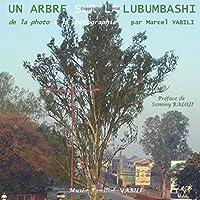 de la Photo a la Photographie: Un Arbre Sur La Lubumbashi