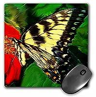 3drose LLC 8x 8x 0.25インチバタフライマウスパッド( MP _ 3965_ 1)