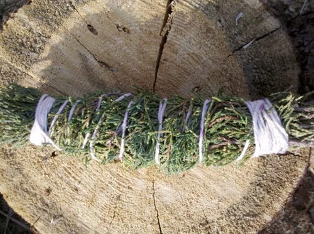 背の高いチャンピオン在庫Cedar smudge stick 7