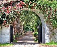 Hacienda 玄関用背景幕 10×8フィート 写真スタジオ用 ホワイト アーチ型 門 春 夏 花 葉 ロマンチックな写真ブースの背景