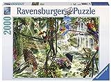 2000ピース ジグソーパズル ジャングル Dschungelimpressionen (98 x 75 cm)