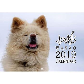ぶさかわ 人気犬 わさお 2019 壁掛け カレンダー (使用時A3縦サイズ) …