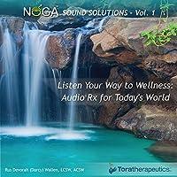 Noga Sound Solutions 1
