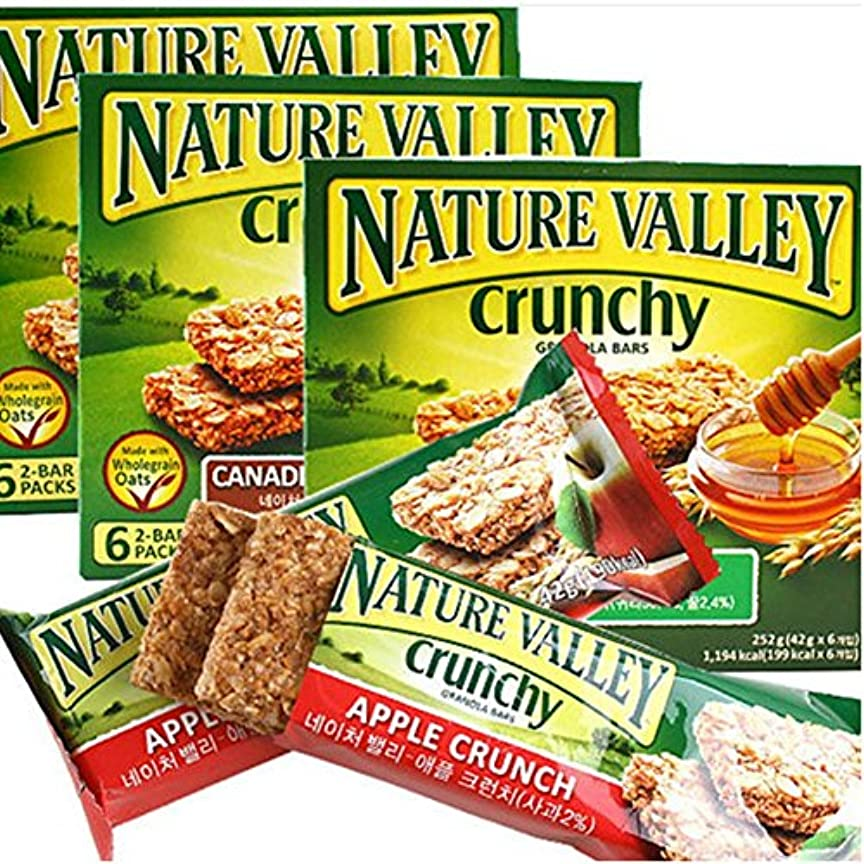 定期的なだます化合物[ネイチャーバレー/Nature Valley] APPLE CRUNCH SYRUP/ネイチャーバレークランチグラノーラバー42g5パックx3 Box - アップルクランチシロップ(合計15袋)穀物バー/シリアル/栄養...