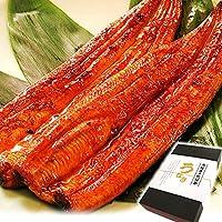 ギフト 国内産鰻(うなぎ) 長蒲焼2本セット