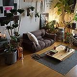 日本製 ソファー 激安 もこもこ 二人掛け 2P [品の良さが魅力のシャンブレー生地:ブラウン] 5段階リクライニング