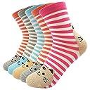 女性 靴下 コットン100% かわいい猫の靴下 動物キャラクター オシャレで足にフィット 五足セット