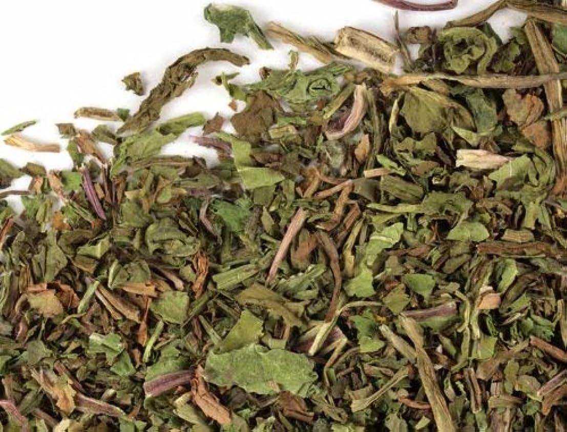 だますレタス観察Herbs : Dandelionリーフ(オーガニック