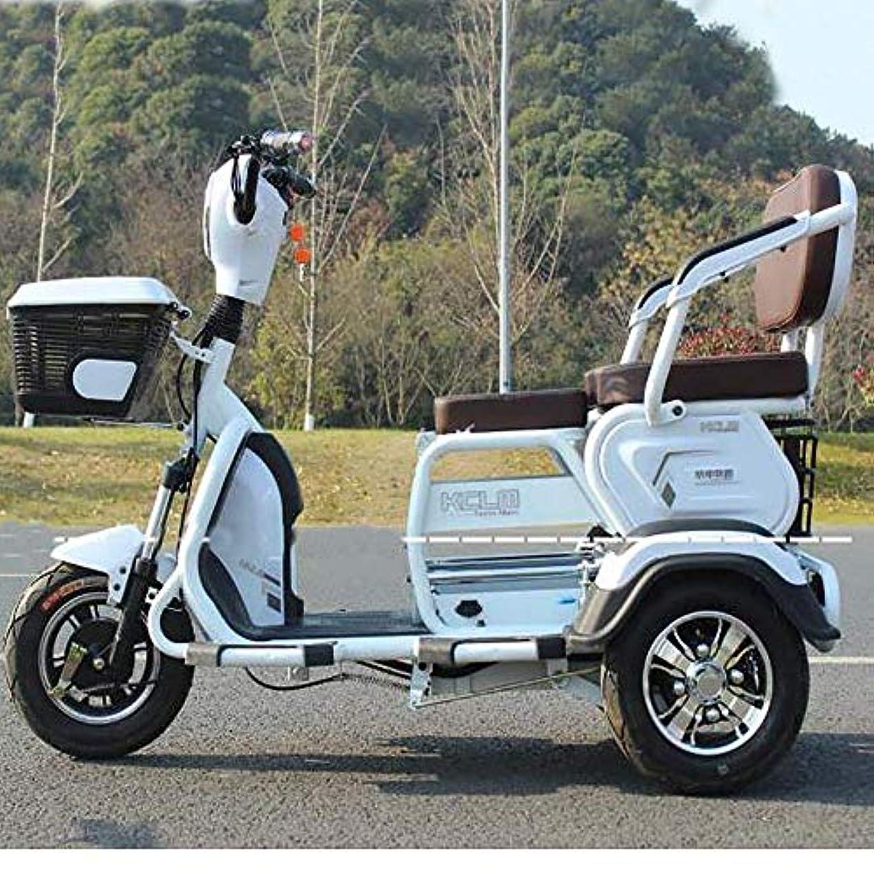 誰でも明らかに余暇電動3輪自転車、電動スクーター、成人用屋外ワゴンリチウム60V 20A /最速40KM / H /負荷高齢者の障害者の男性女性用200 Kg