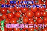 和歌山産 完熟房つき ミニトマト 500g