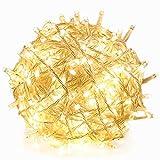 RPGT 1000 LEDs シャンパンゴールド温白・金102メートル透明ワイヤ クリスマスツリーイルミネーションライト 8つのモードがあり、ク..