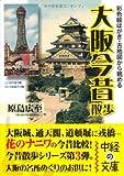 彩色絵はがき・古地図から眺める大阪今昔散歩 (中経の文庫) 画像