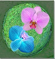 胡蝶蘭 花 CG写真パネル 53×53cm CG-029-S10 ギフト 贈り物 インテリアアート アートフォト。新築祝い 出産祝い 結婚祝い プレゼントに喜ばれます。
