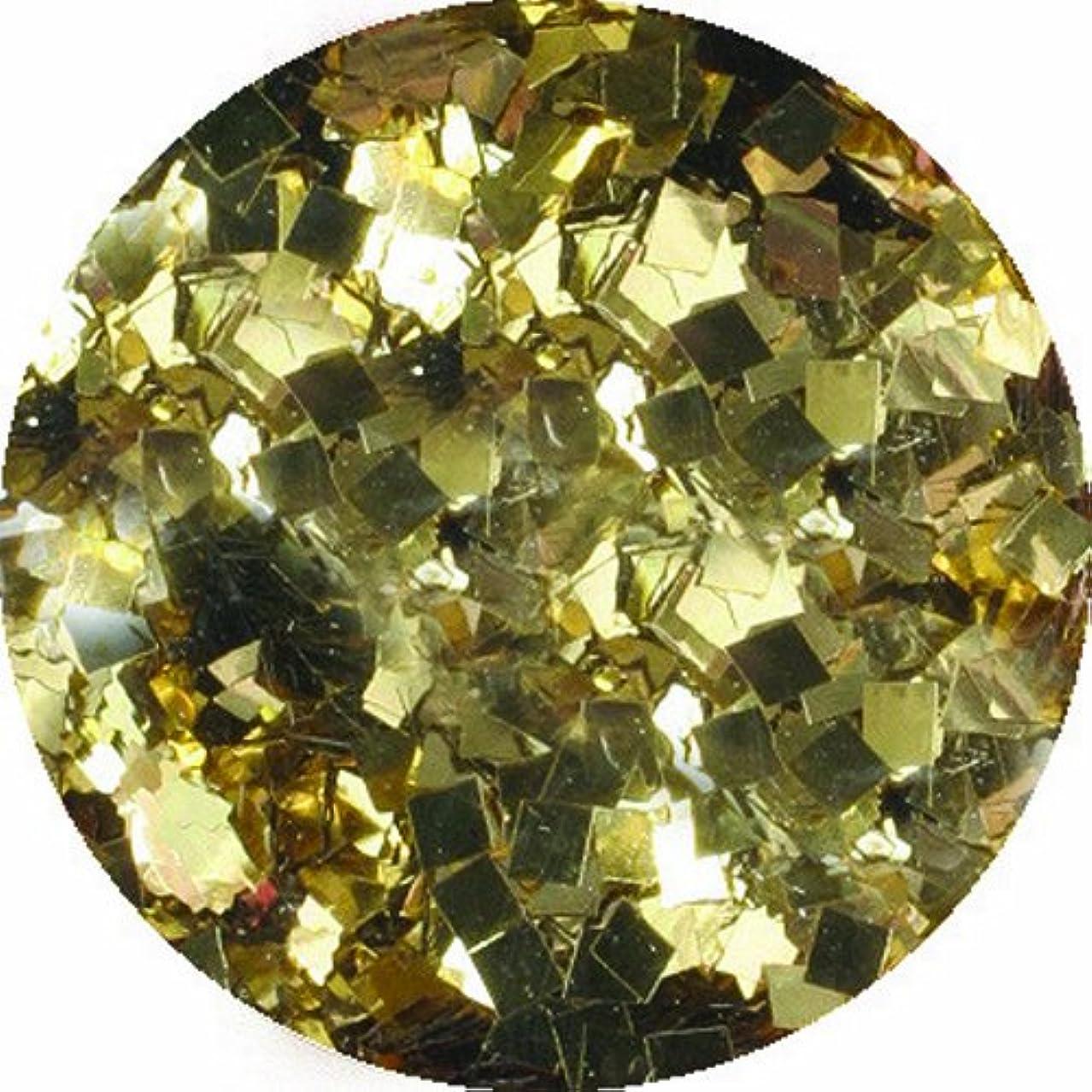 脅威論争傑出したビューティーネイラー ネイル用パウダー 黒崎えり子 ジュエリーコレクション ライトゴールド1.5mm