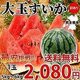 すいか 大玉すいか 送料無料 訳あり 1玉 約5~6kg M~L 熊本県産 西瓜 スイカ
