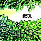 Awakening Soul