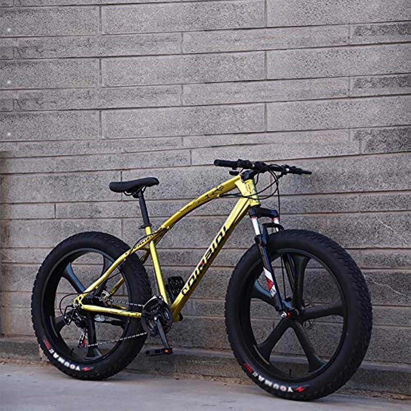 恐れ世界の窓間に合わせ26インチ 脂肪タイヤ サイクル,男性 女性 学生 可変速度 自転車,男性'S 高-炭素鋼 フレーム ハードテイル クロスバイク