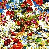 Wild Flowers(初回生産限定盤)(DVD付)