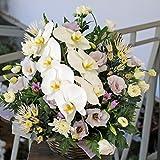 蘭の花を使った お供え お悔やみアレンジメント (おまかせ, 2Lサイズ)