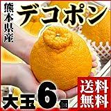 フルーツの目利きが厳選『熊本県産 デコポン 大玉(500g玉) 6個入り』