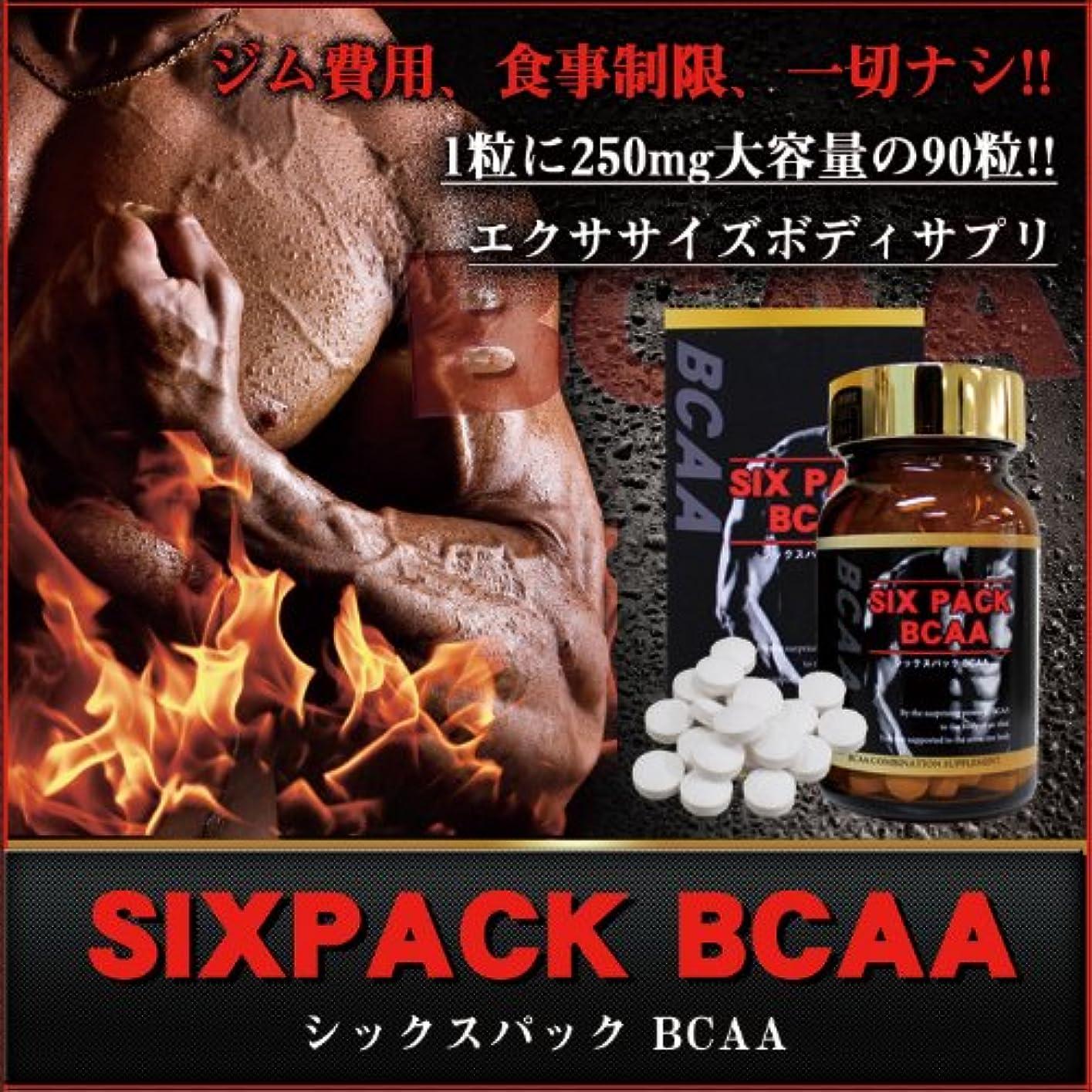 ぜいたく口苦痛シックスパックBCAA (バリン+ロイシン+イソロイシン配合エクササイズボディサプリ)
