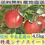 シナノスイート 長野産 減農薬 有機肥料栽培 贈答用 約4.5kg12~16個入