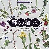 見つけたい楽しみたい野の植物 (アレコレ知りたいシリーズ)