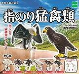 指のり猛禽類 全6種セット ガチャガチャ