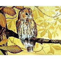 枝の上に立っているフクロウ数字の絵によるDIYデジタル絵画現代の壁アート手描きの油絵